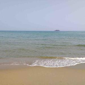 2019年8月4日  無風 猛烈な暑さの中 鳥取砂丘でキス釣り