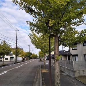 津幡短信vol.93 ~  令和参年 長月。