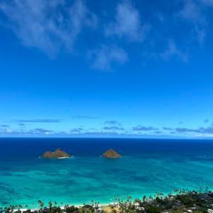 ハワイがまた遠のく感覚に