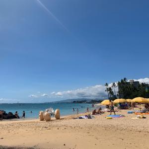 ハワイのいま(97)