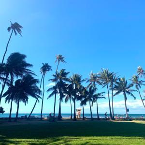 ハワイのいま(126)