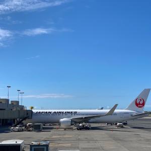 JALハワイ線!10月より増便へ