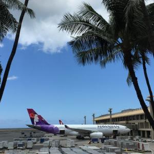 年末ハワイ「飛ぶ?飛ばない?」