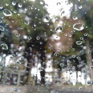 雨の諏訪大社