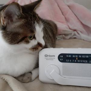 防災手回しラジオ