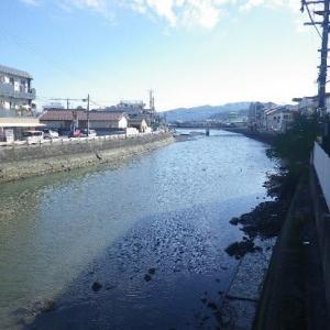 ☆散歩道より:天草・本渡の町山口川 下流へ