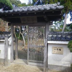 ☆天草市本渡:延慶寺・苔生園の「兜梅」 開花