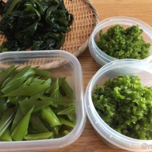 早採りワカメを味わいつくす!大量ワカメの保存方法(乾燥・塩蔵)と簡単料理レシピ