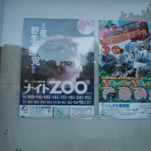 いしかわ動物園 ナイトZOOに行ってきました。