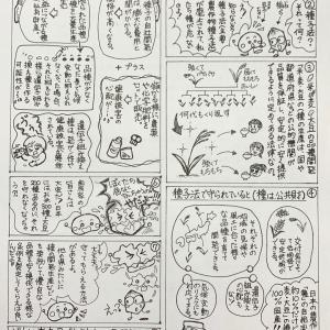 掲載された!種の命を守る種子法の8コマ漫画