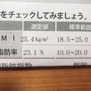 自分でもちょっと引いてる 〜体脂肪率公開の儀〜