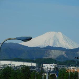 20190428_伊東の大海老と西伊豆からの富士山