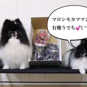 9月〜10月のお届け物❗有難う御座います(*^o^*)