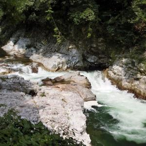 今日の鮎滝_2019-09-11