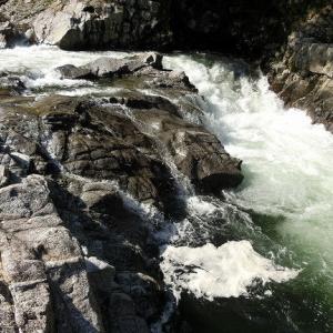 今日の鮎滝_2020-06-16