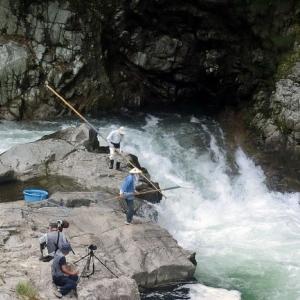 今日の鮎滝_2020-06-24