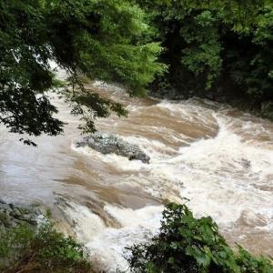 今日の鮎滝・猿橋_2020-07-04