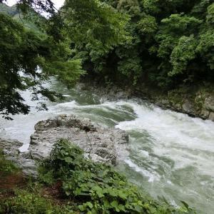 今日の鮎滝・猿橋_2020-07-10