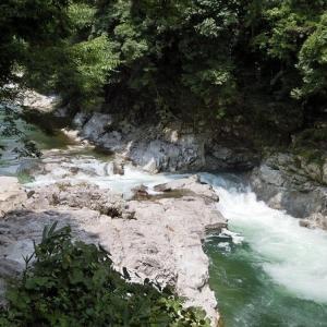今日の鮎滝_2020-08-06