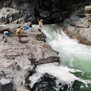今日の鮎滝_2020-08-19