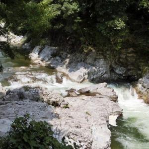 今日の鮎滝&ピンコ_2020-08-25