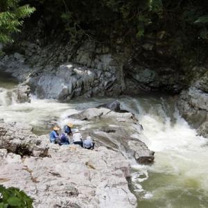今日の鮎滝_2021-07-15