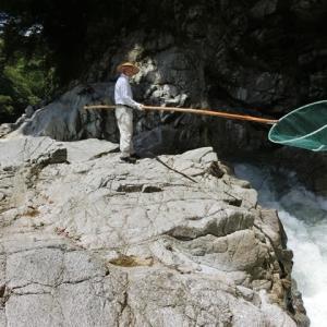 今日の鮎滝_2021-07-19