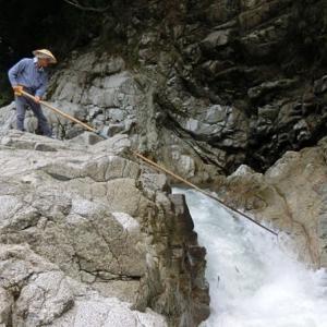 今日の鮎滝_2021-07-23