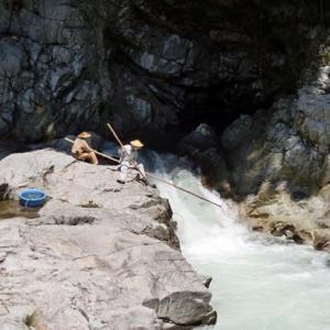 今日の鮎滝_2021-07-25