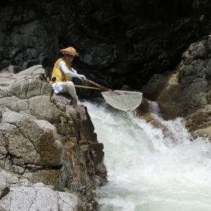今日の鮎滝_2021-08-02