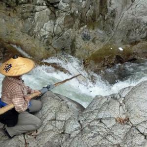 今日の鮎滝_2021-08-03
