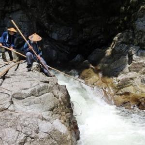 今日の鮎滝_2021-08-05