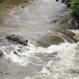 今日の鮎滝_2021-08-15