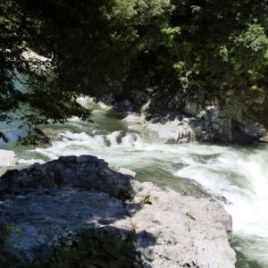今日の鮎滝_2021-09-10