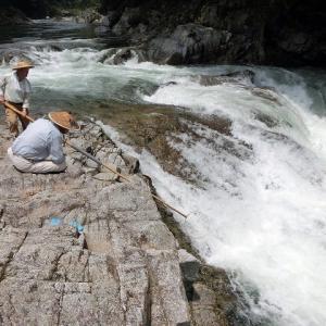 今日の鮎滝_2019-07-25