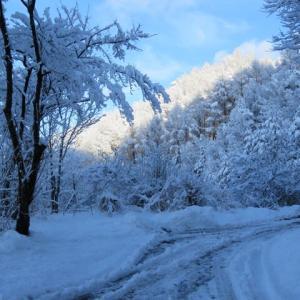 雪景色が素敵!