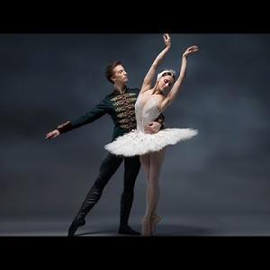 NHK BSプレミアムで英国ロイヤル・バレエ団『白鳥の湖』を2020年11月29日に放送