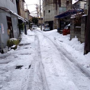 大した雪でなくよかったです。