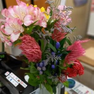 今日の切り花