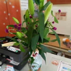 今日のお店の切り花