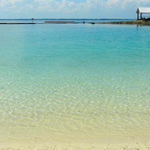 セブ島留学 2020年ジュニアキャンプと2020年夏休み留学のご案内