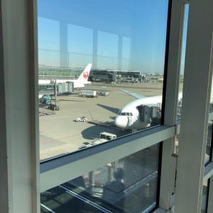 ♦○○の至福♦国際線JALのビジネスクラスに搭乗しました☆