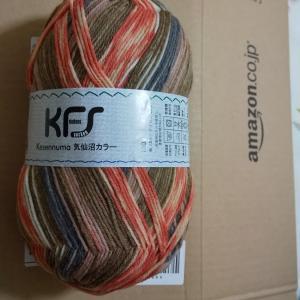 アマゾンほしいものリストから、opal毛糸の気仙沼カラー鮭をいただきましたp(^^)q