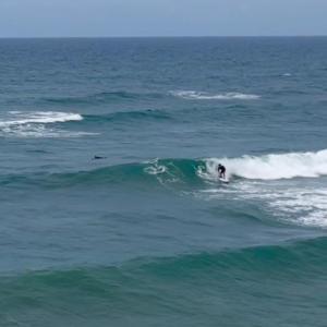【無人サーフポイント探して!!楽しいサーフィン!!】