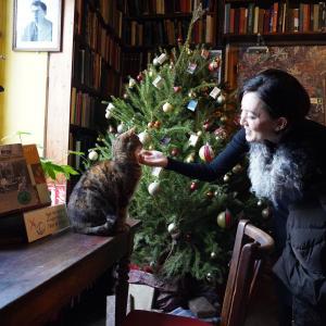Cozy Christmas Coffee Shop ..