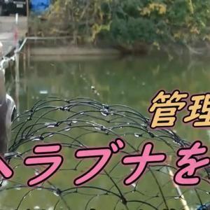 いろんなお魚釣りを楽しむ〔20〕
