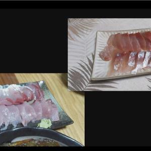 釣ったチヌ(黒鯛)とハマチ(イナダ)の美味しくいただく調理方法
