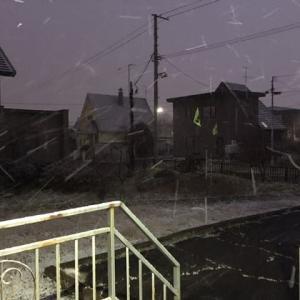 わあ 雪が降っている