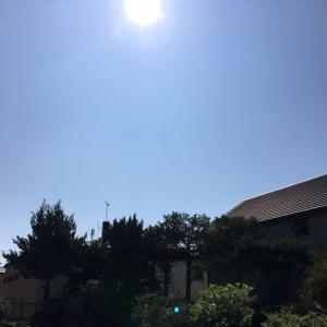 今日は暑くなる