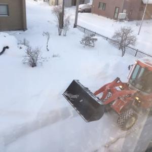 除雪車が来た